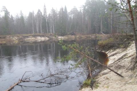 Река Лух осенью